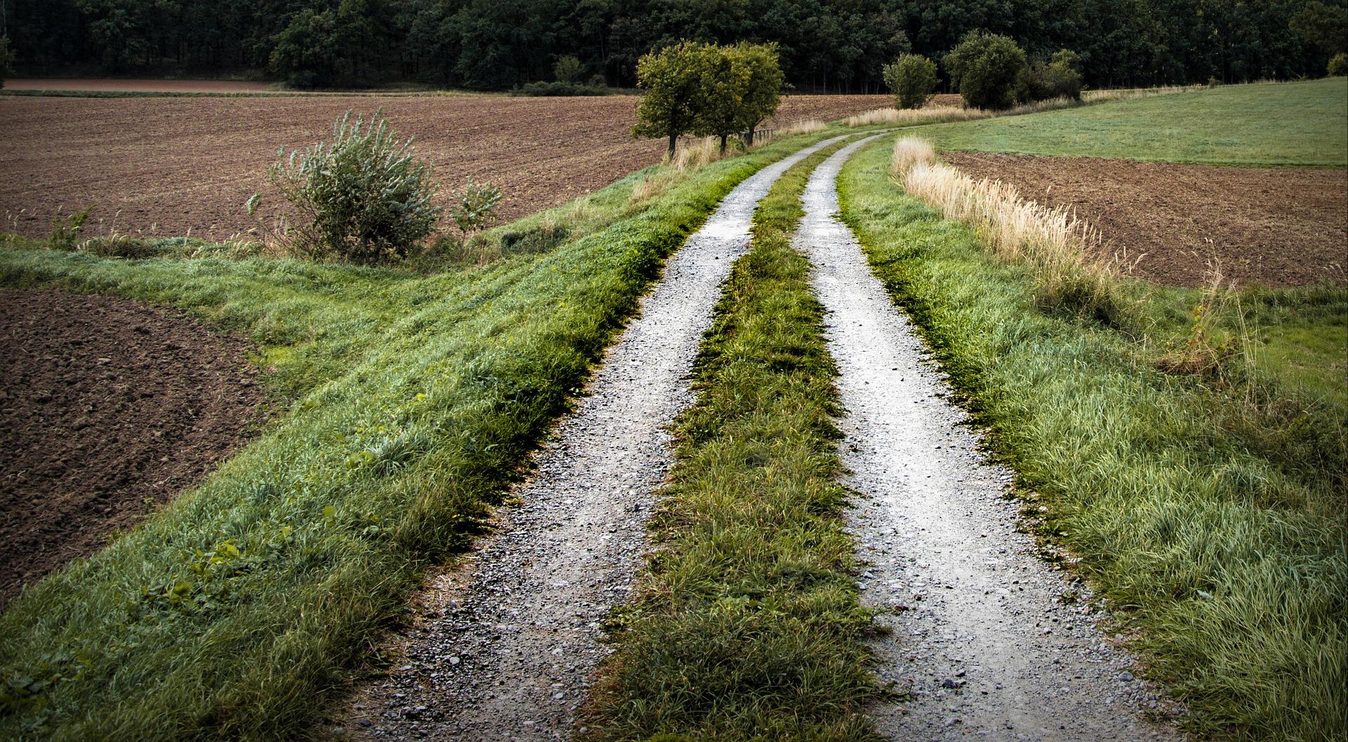 path-972781_1920